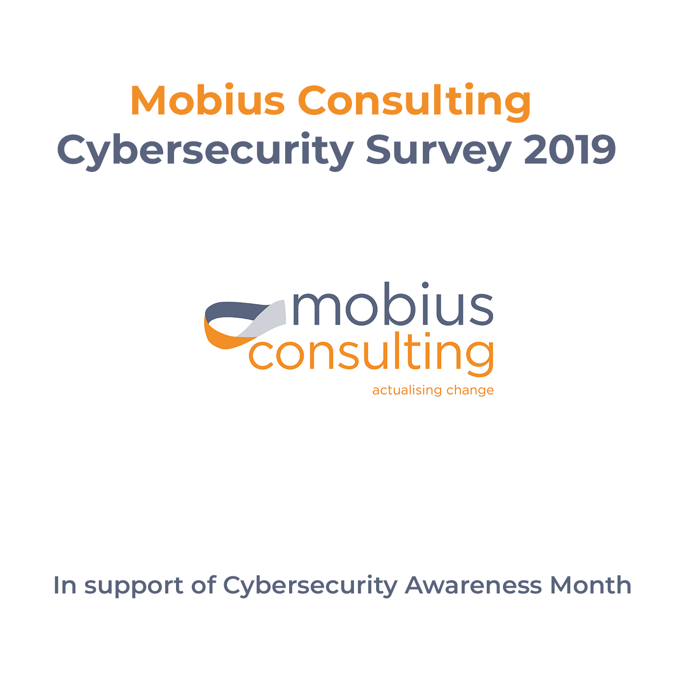 Cybersecurity Survey